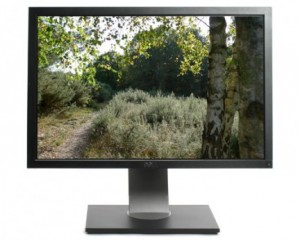 Dell UltraSharp U2410 IPS Monitor